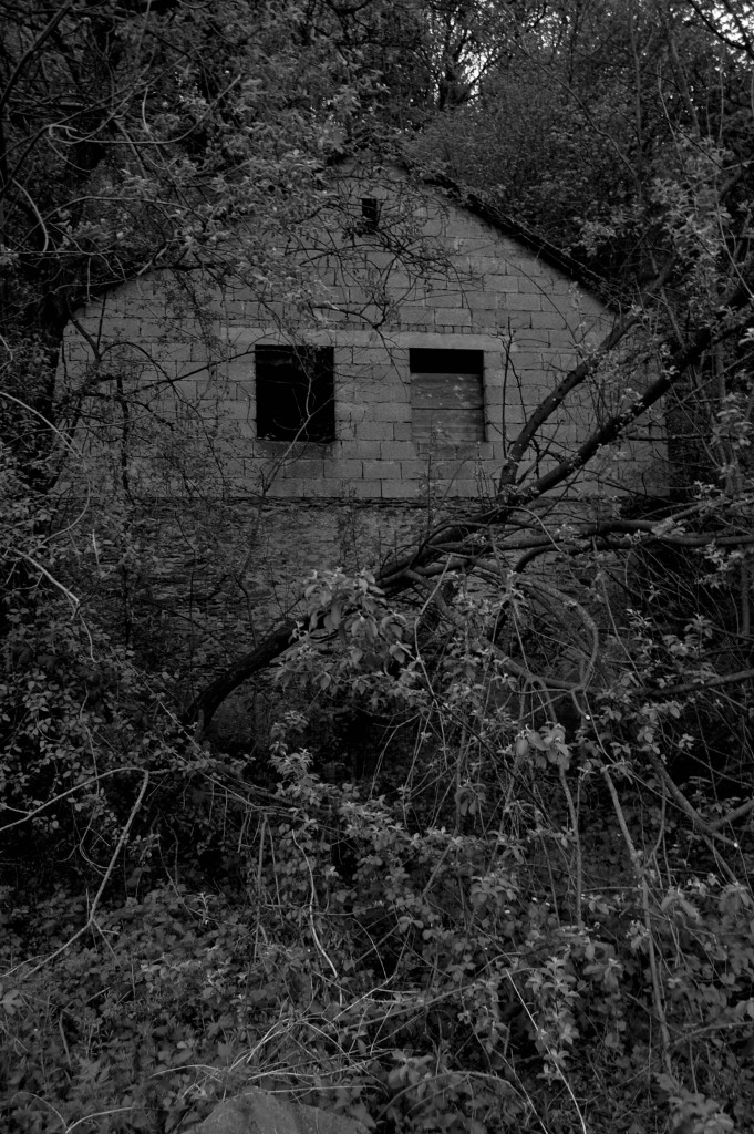 Immerhin ein Dach über dem Kopf: Rechtfertigt die Wohnungsnot jede Bruchbude? Foto: Raphael Zingen